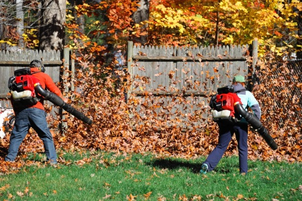 southbury-ct-fall-cleanup-services