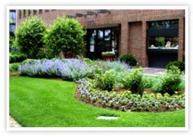 Affordable Landscaping & Lawn Care Services | Danbury, Brookfield, Bethel, CT