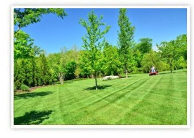 Full Lawn Care Services - Fairfield, Litchfield, New Haven County
