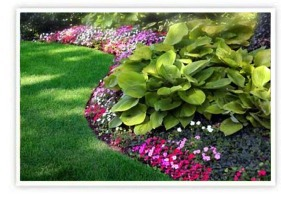Spring Cleanups, Lawn Care, Fertilizer and Debris Removal Services | Southbury, CT